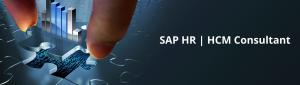 SAP HCM Consultant